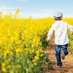 Pojke som springer längs rapsfält, bild från Bayn Europes hemsida